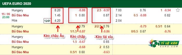 bảng kèo trận đấu Hungary vs Bo Dao Nha