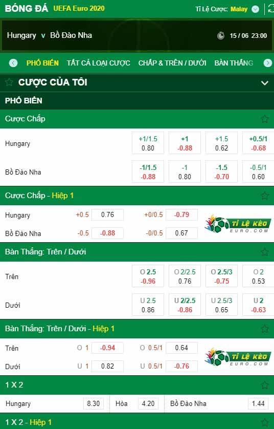 chi tiết kèo trận đấu Hungary vs Bo Dao Nha